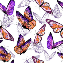 Purple And Orange Butterflies,...