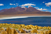 Bolivia, The Southwest Of The ...