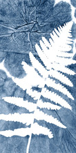 Vector Fern Leaves On Abstract Indigo Tie Dye Background. Hand Drawn Plants  On Blue Decorative Texture. Clipping Mask Is Used For Further Easy Editing.