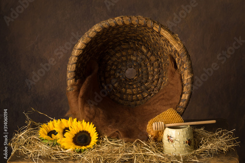 Foto Open beehive and sunflowers
