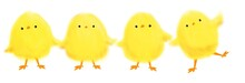 Collection Of Cute Cartoon Yellow Chicks For Easter On White Background