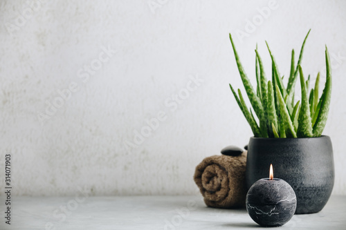 Natural Spa concept with aloe vera, space for text and logo Wallpaper Mural