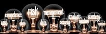 Light Bulbs With Risk Manageme...