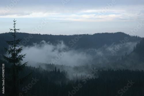 Mgła Góry Tatry