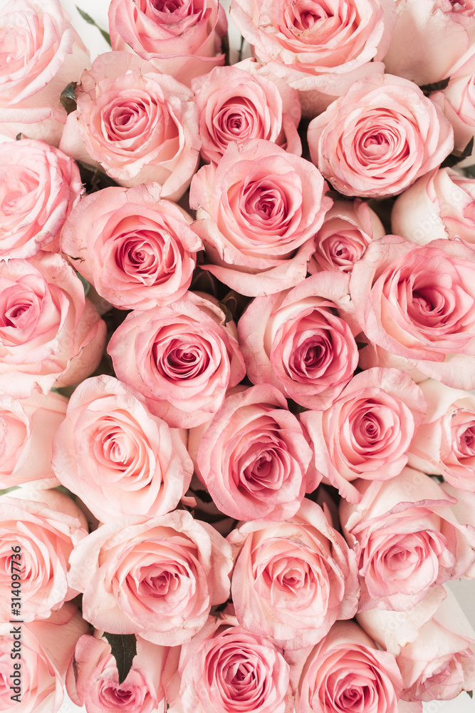 Fototapeta Pink rose flowers pattern background. Top view floral texture.