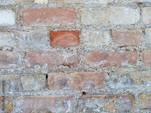 Old brick wall for textured background art.