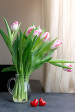 Bouquet Of White With Pink Tulips In Glass Vase With Two Red Hearts On Table Near Window. Birthday, Love, Valentine's Day Concept. Natural Light, Copy Space. Greeting Card.