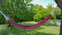Red Brazil Hammock Hanging Bet...