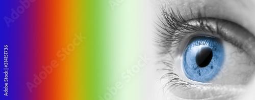 Cuadros en Lienzo  Eye Doctor Concept