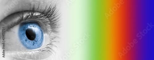 Fotografía  Eye Looking At Primary Colors/Eye Concept