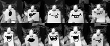 Funny Cat Collage, Close Up Of...
