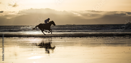 Cuadros en Lienzo  Silhouette of race horse and jockey galloping on the beach, west coast of county