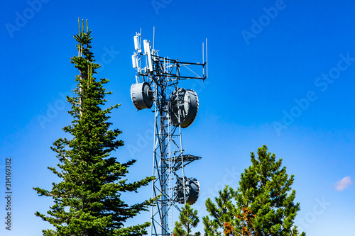 Fotografie, Tablou A cellular base station, or cell site tower, is seen between green trees and a blue sky