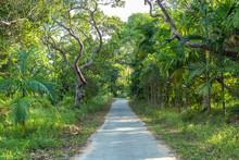 Small Narrow Roads Lead Throug...