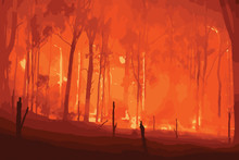 Forest Fire. Wildfire Burning ...