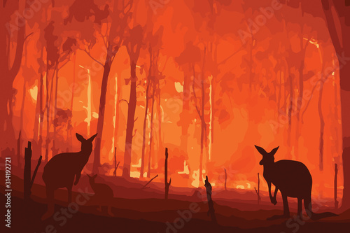 Fire in Australia Canvas Print
