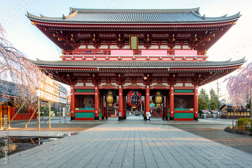 Sensoji temple gate with cherry blossom tree during spring season in morning at Asakusa district in Tokyo, Japan Wallpaper Mural