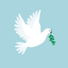 White Pigeon With Olive Branch. Dove Flying And Holding A Holly Message. Symbol For Peace, Love, Faith. Vector Illustration.