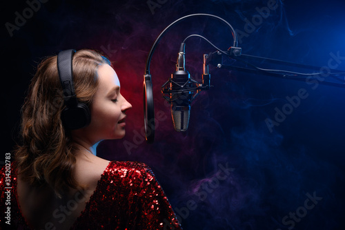 Banner for vocal lessons and music Wallpaper Mural