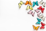 Multicolored tropical butterflies on white background top-down frame copy space
