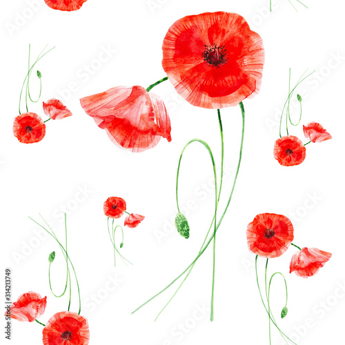 Beautiful red poppies. Watercolor illustration isolated on white background.Seamless pattern