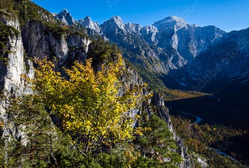 Sunny colorful autumn alpine scene Wallpaper Mural