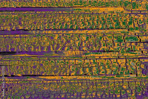 Obraz Texture bois calciné peint - fototapety do salonu