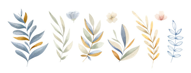 Hand painted watercolor leaves, brunches and flowers in soft color scheme - b...