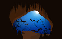 Bats Are Leaving The Cave At Night.