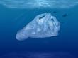 Plastiktüte Unterwasser Umweltverschutzung in den Weltmeeren