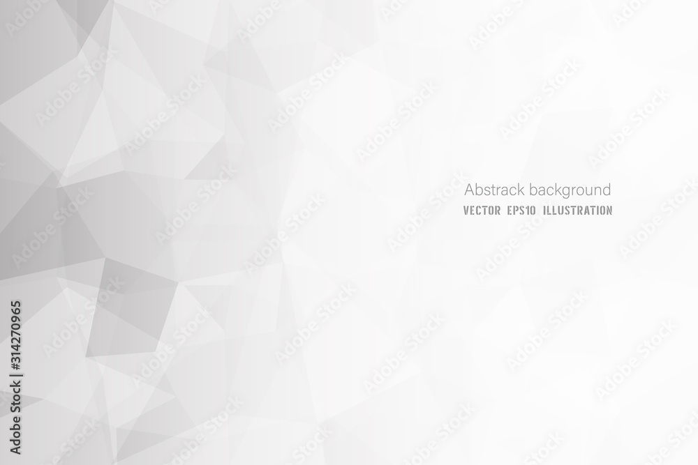 Fototapeta Abstract geometric white and gray polygon or lowpoly vector technology concept background.