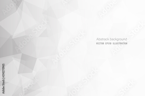Abstract geometric white and gray polygon or lowpoly vector technology concept background Canvas Print