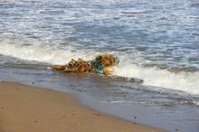 Waste Fishing Net Washed Ashore