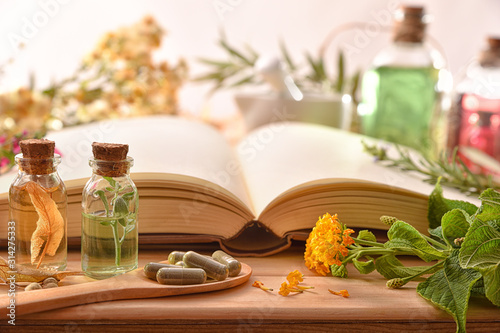 Fototapeta Traditional medicine with herbs and book on table front view obraz