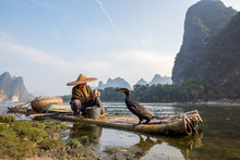 A Fisherman And His Cormorants On A Bamboo Raft In Guilin, China
