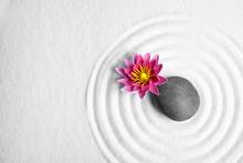 Zen Garden. Beautiful Lotus Fl...