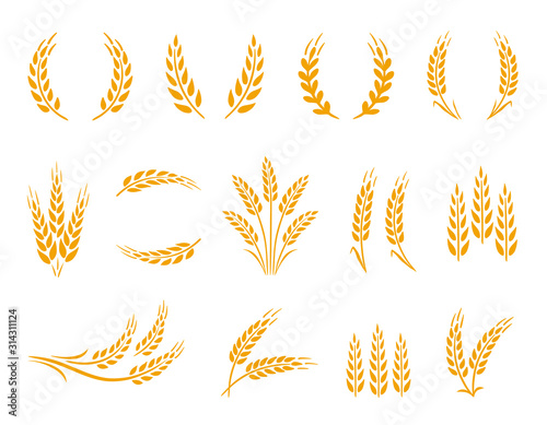 Wheat wreaths and grain spikes set icons