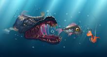 Predatory Fish Underwater, Anc...