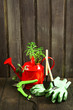 canvas print picture - Red metal watering can with succulent, pruner, tools, gloves on wooden background in village. Copy space