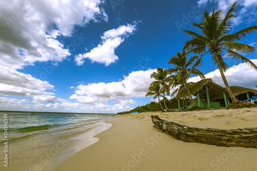 tropical beach in Caribbean Sea under beautiful Sky