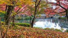 Eikando Zerin-ji Temple With Fall Foliage - Kyoto, Japan