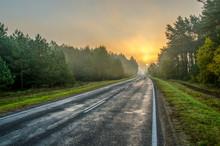 Autumn Morning Landscape. Wet ...