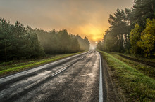 Autumn Morning Landscape. Wet Road After Rain Passes Through The Forest. The Sun And Trees Are Hidden In The Fog. Hard Focus. Hdr Image.