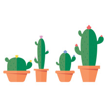 Friendly Cactus Set Of Four Ca...