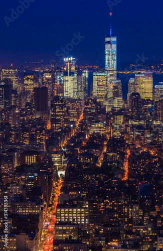 New York Downtown and lower Manhattan skyline view with the One World Trade Cent Canvas Print