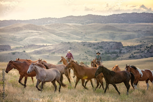 Herding Horses Fotobehang