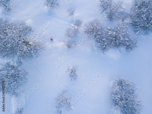Aerial view of backcountry freeride skier leaving traces in powder snow Canvas Print