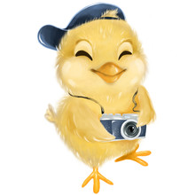 Little Chicken With Camera. Ha...