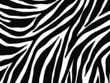 Fototapeta Zebra - zebra seamless pattern