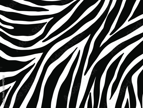 zebra seamless pattern